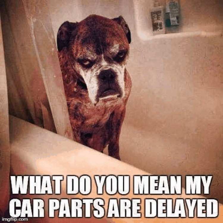Delayed Car Parts