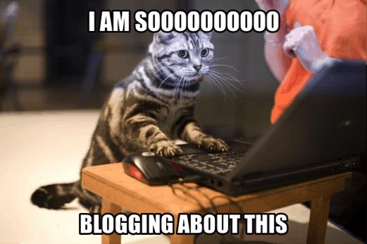 Kim the Blogger